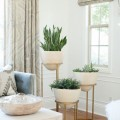 Ideas-para-decorar-tu-sala-con-plantas-6